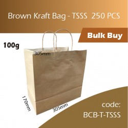 05-Brown Kraft Bag - TSSS牛皮纸手挽袋 250pcs